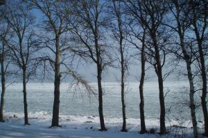 Hav og vinter